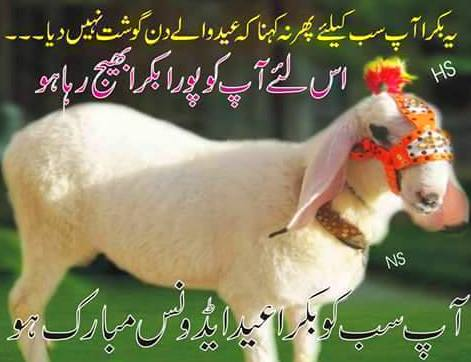 Eid (Qurbani) sms pic