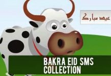 Latest Funny Bakra Eid (Eid Ul Azha) Sms Text Messages