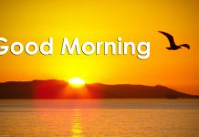 good_morning_sms 2016-newfreesms.com