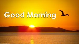 good_morning_sms 2016-newfreesms.com
