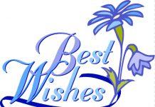 Best-Wishes-